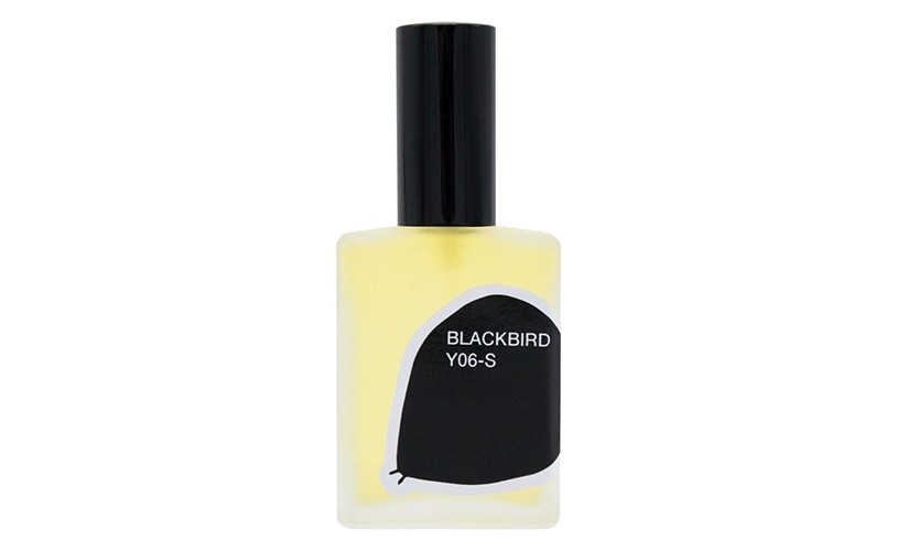 Blackbird Y06-S
