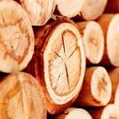Нота Благородная древесина