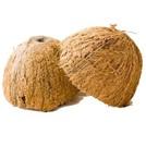 Нота Скорлупа кокоса