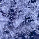 Нота Снежинки