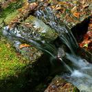 Нота Родниковая вода