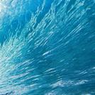 Нота Голубая вода