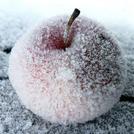 Нота Замороженное яблоко