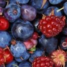 Нота Лесные ягоды