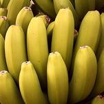 Нота Банан