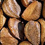 Нота Бразильский орех