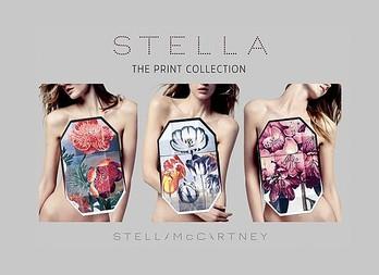 Stella Print Collection