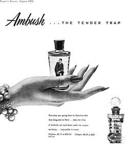 Постер Dana Ambush