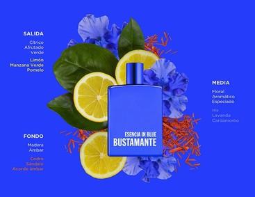 Постер David Bustamante Esencia In Blue