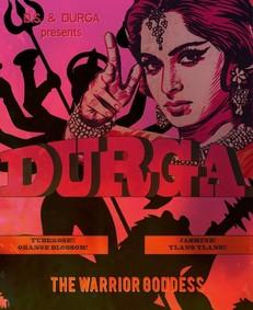 Постер D.S. & Durga Durga