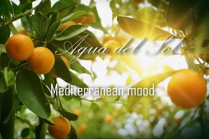 Постер El Agua Viva Agua Del Sol