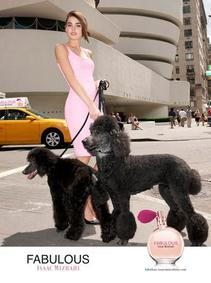 Постер Isaac Mizrahi Fabulous