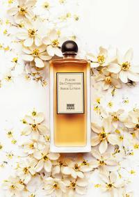 Постер Serge Lutens Fleurs De Citronnier