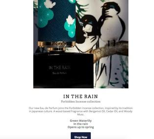 Постер Floraïku In The Rain