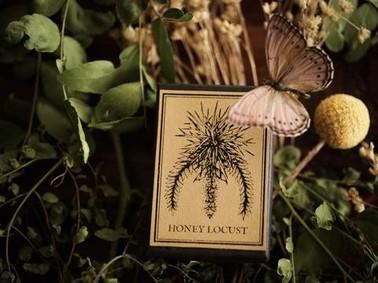 Постер For Strange Women Honey Locust