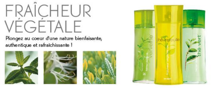 Постер Yves Rocher Fraîcheur Végétale de Verveine