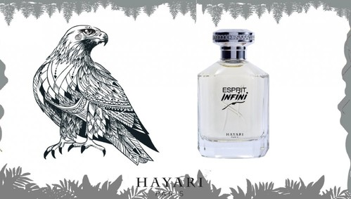 Постер Hayari Parfums Esprit Infini