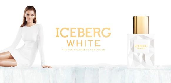 Постер Iceberg White