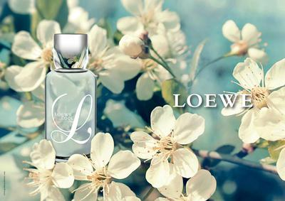 Постер L Loewe Cool