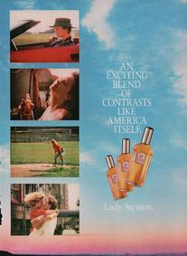 Постер Lady Stetson
