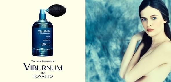 Постер Laura Tonatto Viburnum