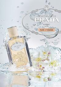 Постер Prada Les Infusions: Infusion de Fleur d'Oranger
