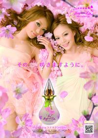 Постер Expand Magic to Love Sakuraberry 2008