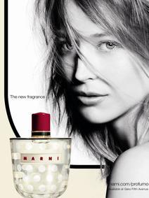 Постер Marni