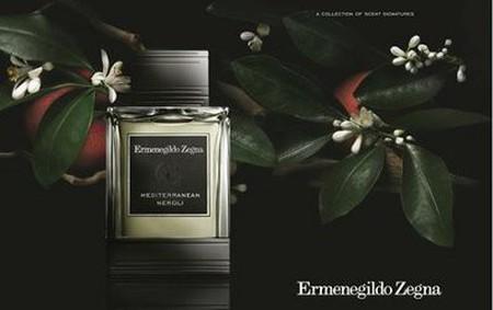 Постер Ermenegildo Zegna Mediterranean Neroli