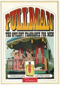 Постер Dana Pullman