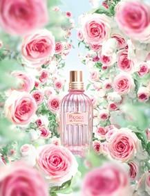 Постер L`Occitane Roses Et Reines