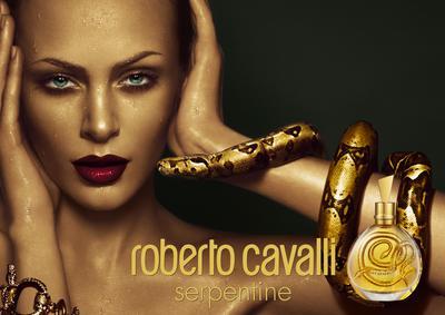 Постер Roberto Cavalli Serpentine