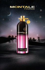 Постер Montale Starry Night