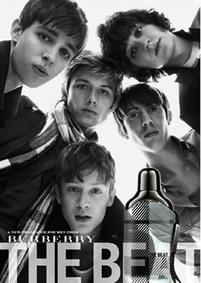 Постер Burberry The Beat for Men