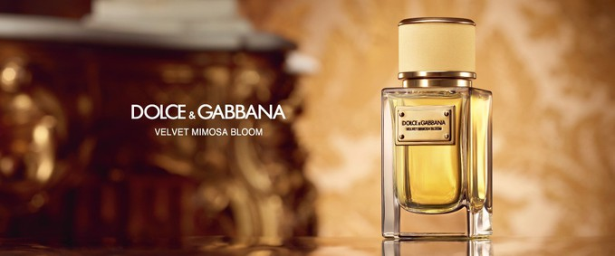 Постер Dolce&Gabbana Velvet Mimosa Bloom