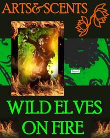 Постер Arts&Scents Wild Elves On Fire