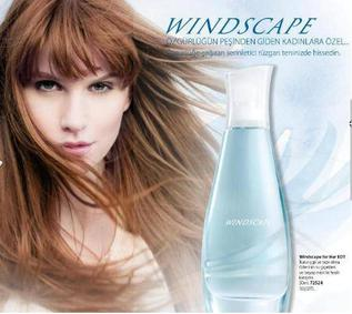 Постер Avon Windscape for Her
