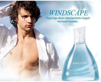 Постер Avon Windscape for Him